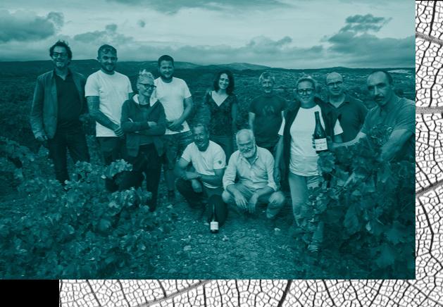 Groupe de vignerons Château Maris dans les vignes