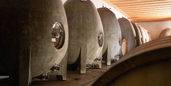 Cuves en forme d'oeuf dans une cave